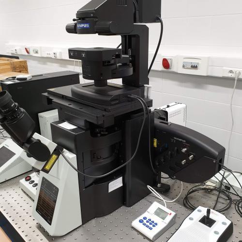 HILO mikroszkóp